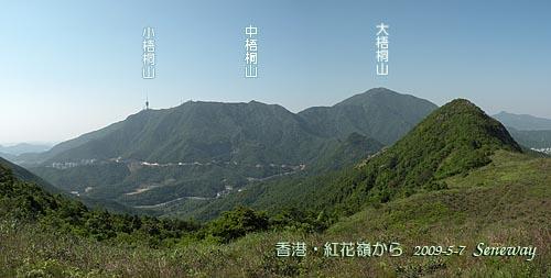 aokirisan091025-17_500.jpg